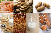 7_Allergy_Foods